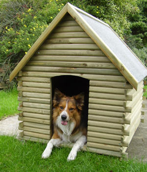 Dog kennels are they for your pet living years pets blog for Dog boarding in homes